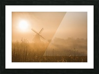 Golden Dawn. Picture Frame print