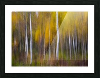 Abstract Fall Picture Frame print