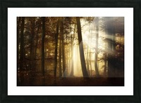 a new day Picture Frame print