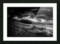 marram grass Picture Frame print