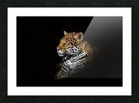 Jaguar Portrait Picture Frame print