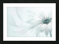 Purity Picture Frame print