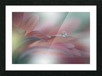 Sunbeam..II Picture Frame print