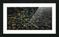 Dolomiti Picture Frame print