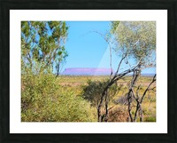 Outback6 Picture Frame print