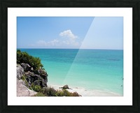 Tropical8 Picture Frame print