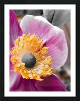 I am pink  Impression et Cadre photo