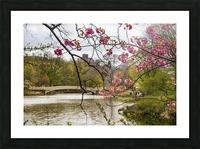 Central Park Picture Frame print
