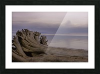 Driftwood Picture Frame print
