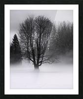 Winter fog Picture Frame print