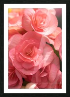 Pink pastel flower Picture Frame print