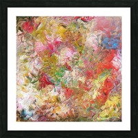 Rocky Feathers Picture Frame print