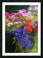 Alaskan Bouquet Picture Frame print