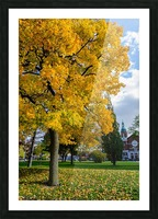 Autumn Picture Frame print