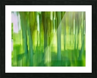 Moving Trees 12 Green Landscape 52-70 360px Picture Frame print