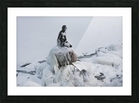 Frozen canal near statue of The Little Mermaid  Picture Frame print