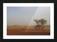 The breakaways South Australia Picture Frame print