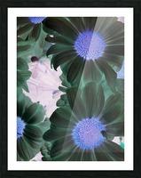 Purple44flow  Impression et Cadre photo