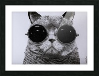 The Cat with glasses Picture Frame print
