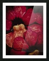 Red Impression et Cadre photo