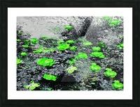7E374240 FD69 4BD5 8609 CAC871FF3515 Picture Frame print