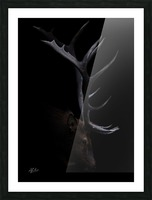 Elk in Black Picture Frame print