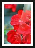 Elegantly Red Picture Frame print