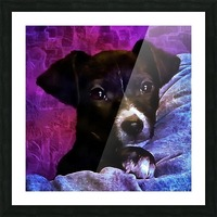 Soft Puppy Snuggles Picture Frame print