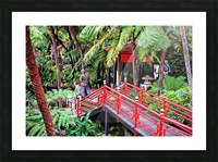 Oriental Gardens Madeira 1 Picture Frame print