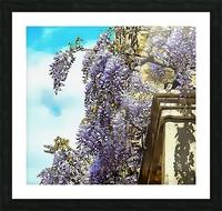 Wisteria Cascade Picture Frame print