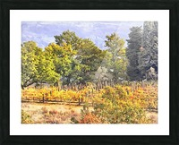 Tuscan Countryside in Autumn Picture Frame print