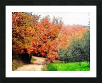 Autumn Golden Colours Umbria Picture Frame print