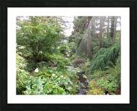 Glendale Gardens Victoria BC Picture Frame print