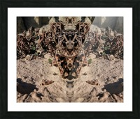 Ox Picture Frame print