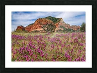 Clover Fields in Sedona Picture Frame print