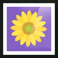 Sunflower (12)_1559876729.4481 Picture Frame print