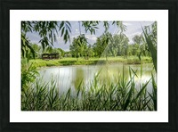 Summer Lake Picture Frame print