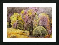 outdoor nature natural woods Picture Frame print