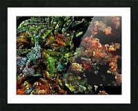 The Face of Nature Picture Frame print