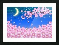 sakura cherry blossom night moon Picture Frame print