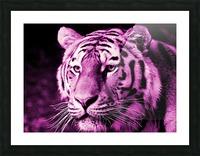 Tiger pop pink Picture Frame print