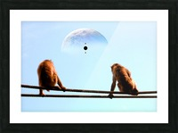 blue moon keys Picture Frame print