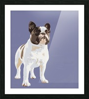French Bulldog Pop art Picture Frame print