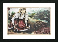 Harvesting The Coffee Beans  Picture Frame print