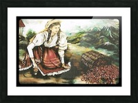Harvesting Coffee Beans  Picture Frame print