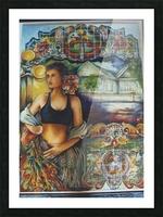 Flamenco Dancer  Picture Frame print