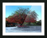 P36 - Red Red Tree Picture Frame print