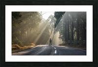 DSC_9746 Picture Frame print