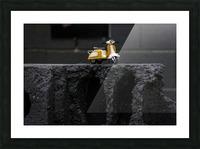 DSC_4560 Picture Frame print