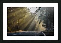 DSC_9742 Picture Frame print